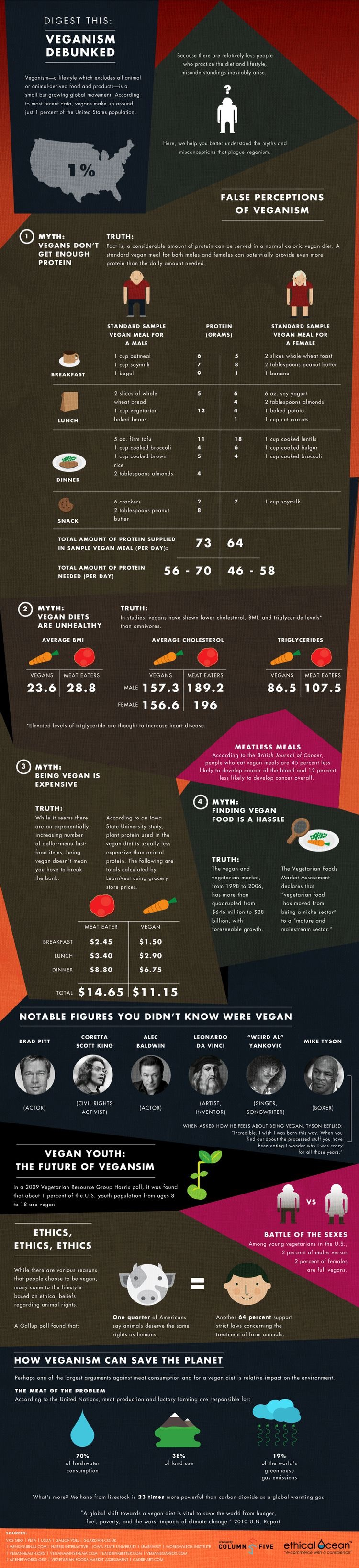 vegan facts infographic
