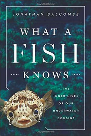 what a fish knows book