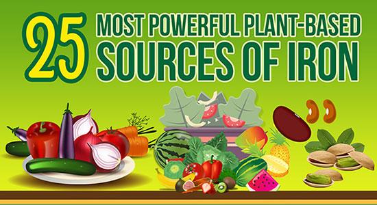 vegan sources of iron
