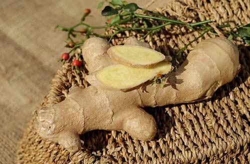 ginger-natural-antibiotic