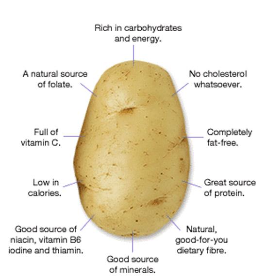 potato-nutrition-starch