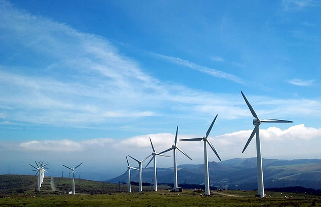 wind-power-vegan-electricity